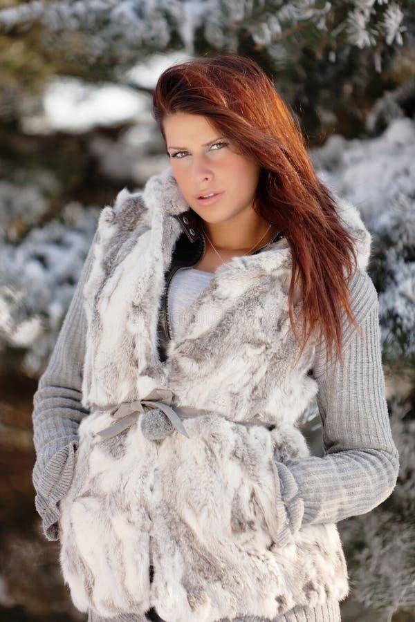 Winter-Schönheit lizenzfreie stockfotografie
