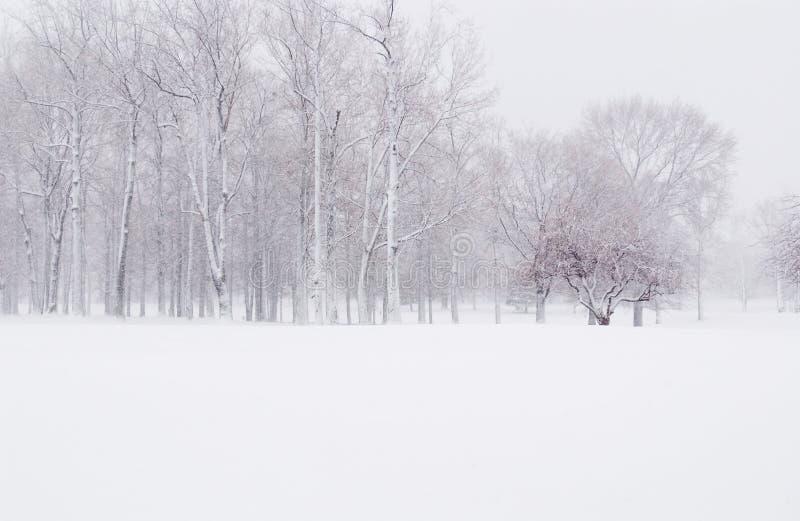 Winter-Schnee stockfotos