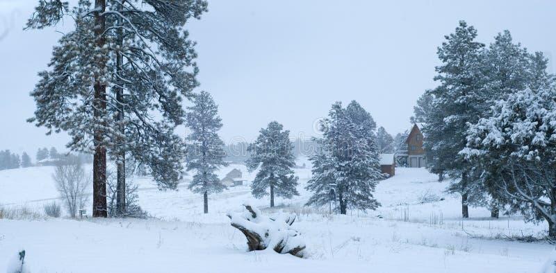 Winter-Schnee-Szene stockbilder