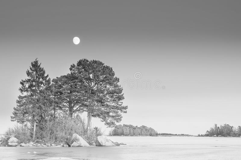 Winter sea landscape with moon royalty free stock images