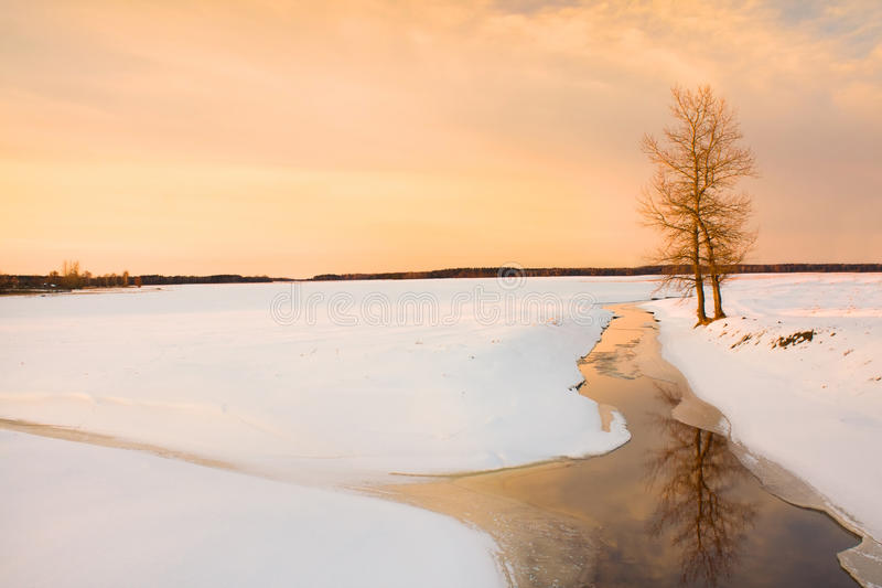 Download Winter season stock photo. Image of area, black, december - 20240024