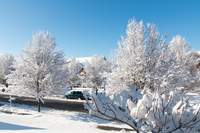 Winter season in city, road and trees after snowfall stock photos