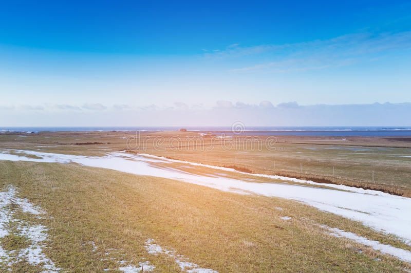 Winter season dry glass landscape skyline with blue sky background. Natural landscape background stock photo