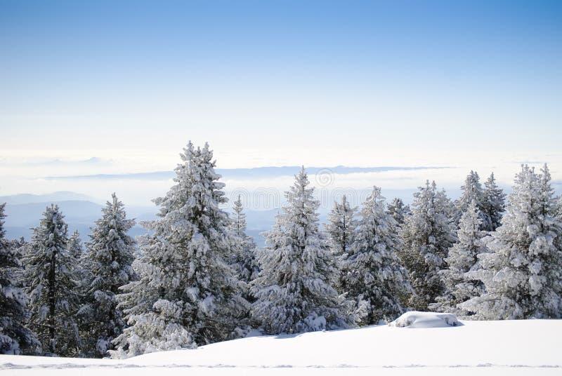 Winter-Serie 7 lizenzfreie stockbilder