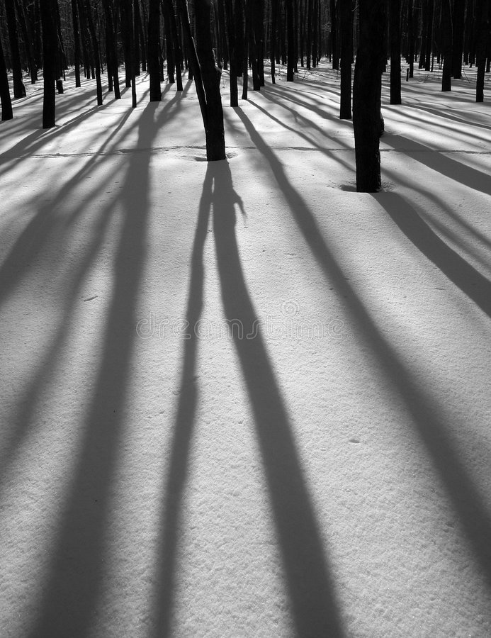 Free Winter Shadows Stock Images - 1354304