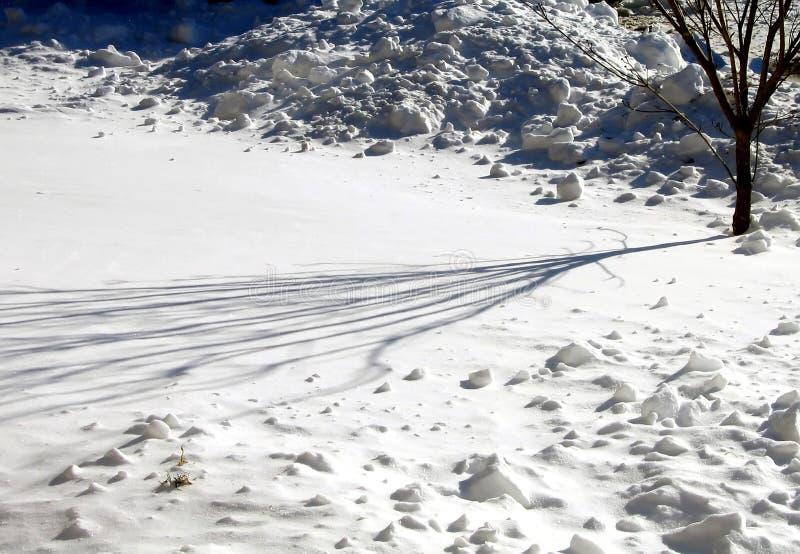 Winter Shadows Stock Photos