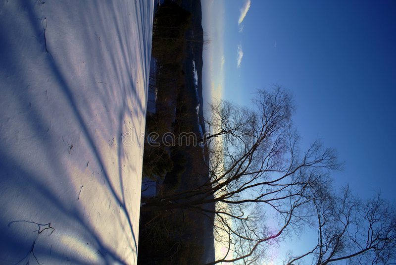 Free Winter Shadows Royalty Free Stock Photography - 6489247