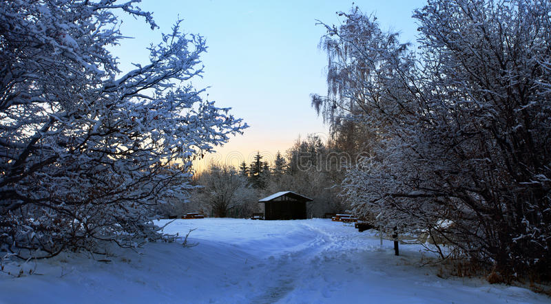 Download Winter shelter stock photo. Image of blue, beautiful - 22511844