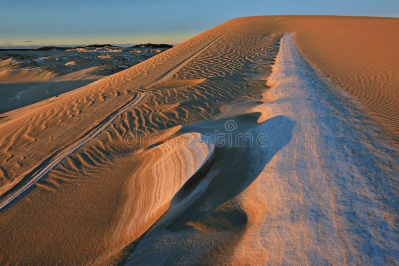 Winter, silberne See-Sanddünen lizenzfreie stockfotografie