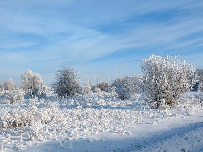 Winter Sky Stock Photography