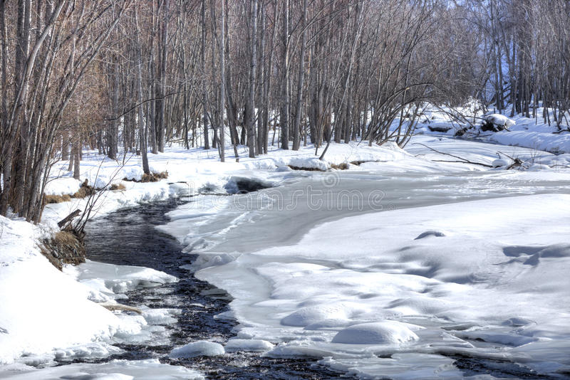 Winter small river and wood stock photography