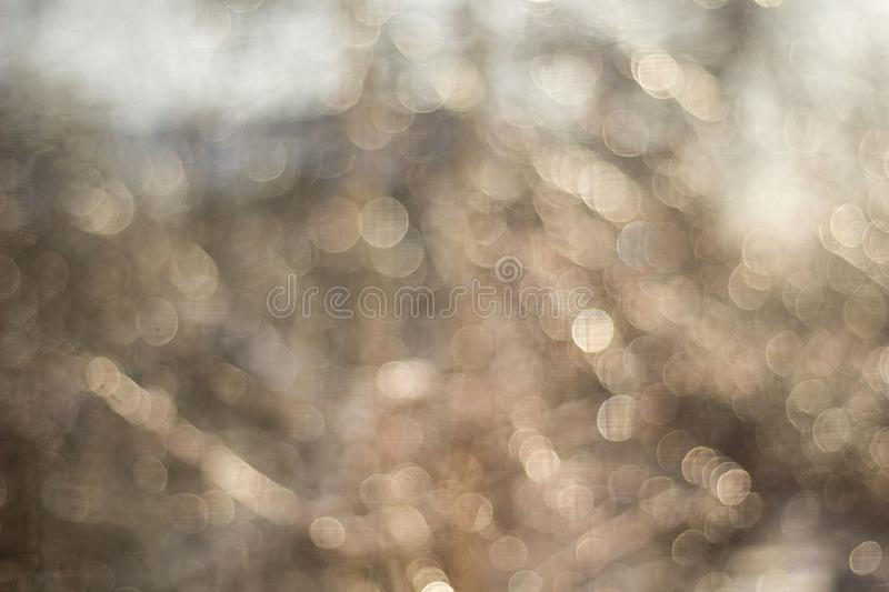 Winter snow blurred background in city park, snowfall in forest, tree branches and bushes covered with snow. Abstract snowflakes in blur royalty free stock photo