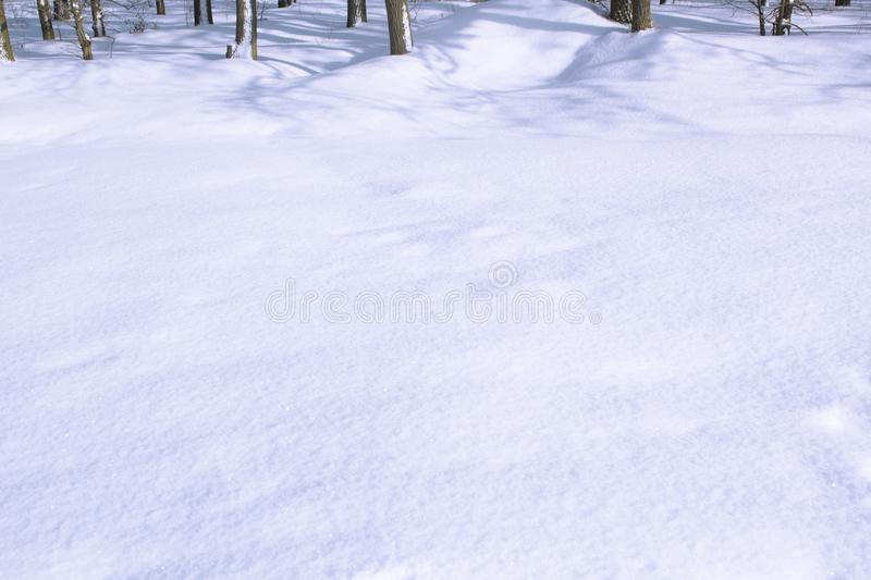 Winter copy space and background with trees in far. Winter snow copy space and background with trees in far stock photo