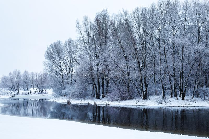 Winter snow covered shore of beautiful lake with trees. Reflecting in the still water stock photos