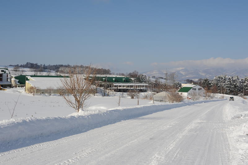 Download Winter Snow Landscape With Snow-covered Road Stock Image - Image: 28171073