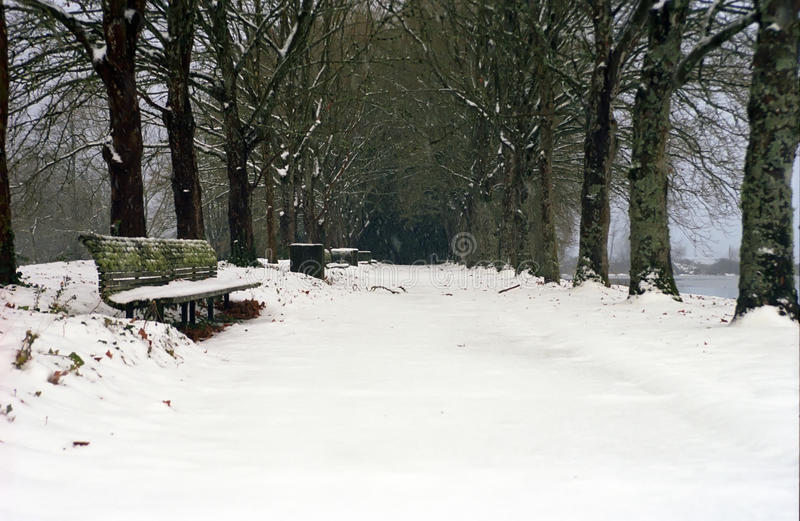 Download Winter Snow In Park Stock Images - Image: 21715494