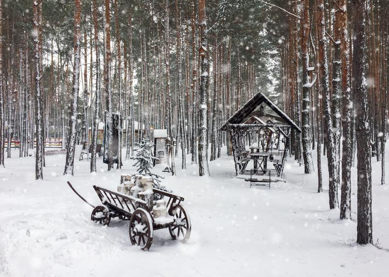 Winter snow pine forest landscape with wooden cart and shed during snowfall. Christmas and New Year concept. royalty free stock photography