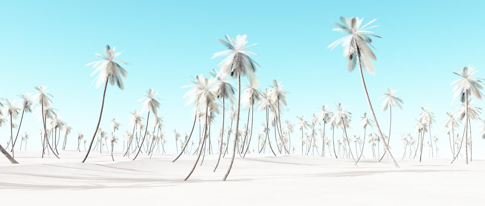 Winter snow white palm beach landscape. Winter snow white palm beach landscape with blue sky vector illustration