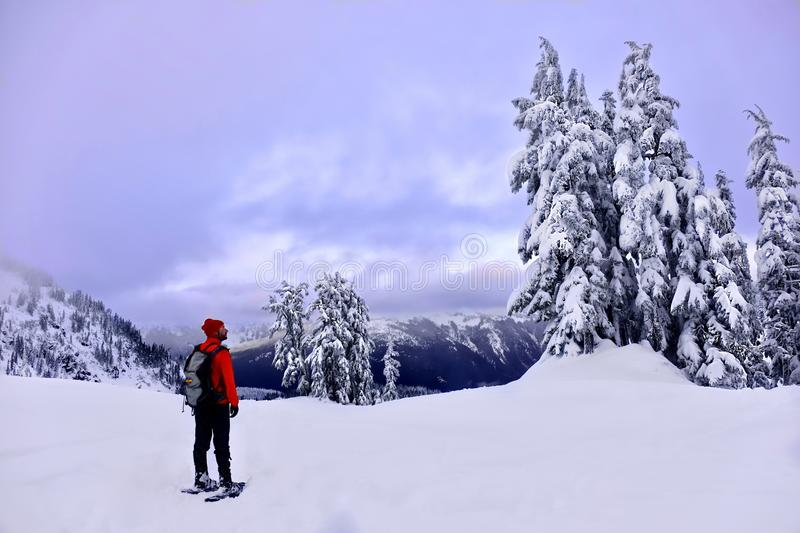 Winter snowshoe hiking in mountains. stock image