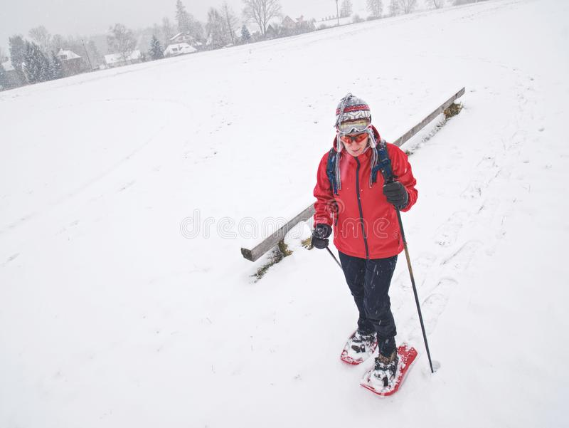 Winter snowshoing in fresh snow. Woman walk while snow fall. Winter snowshoing in fresh snow. Woman walk whiel snow falling from heavy grey clouds, windy cold stock photo
