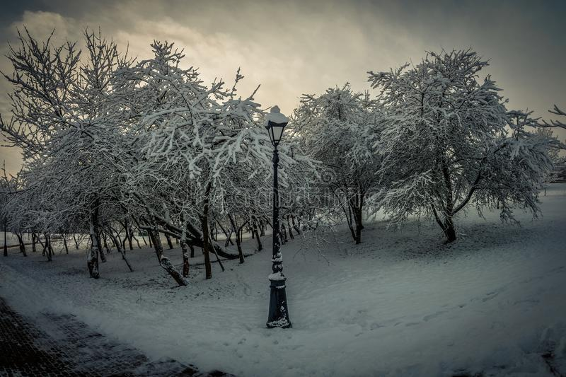 Winter snowy city park. hillside with a pedestrian road lantern and trees in cloudy weather. Picturesque dramatic winter snowy city park. hillside with a stock photo