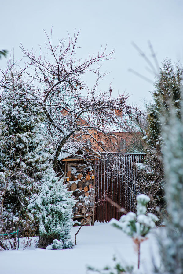 Winter snowy garden view with wood shed and fence stock photo