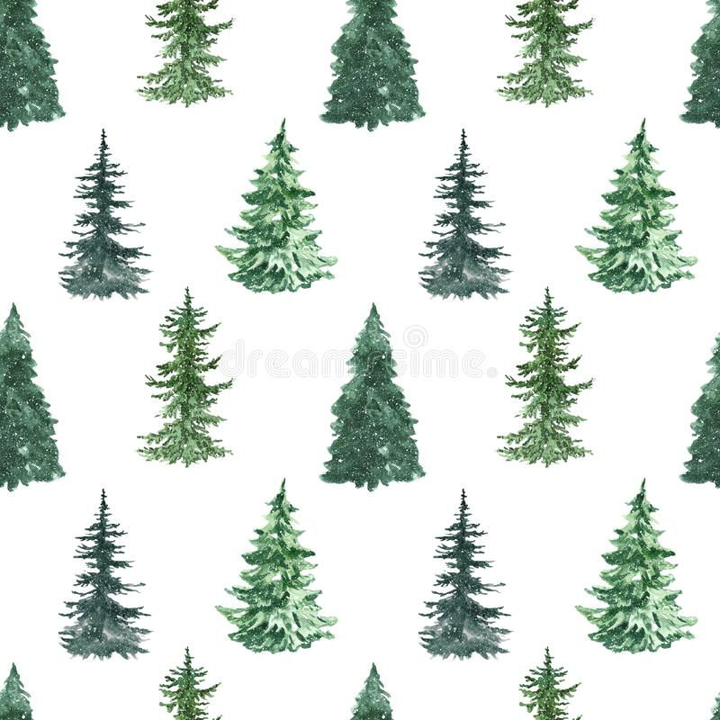 Watercolor pine tree seamless pattern. Hand painted spruce forest repeat print on wite background. Winter illustration with royalty free stock image