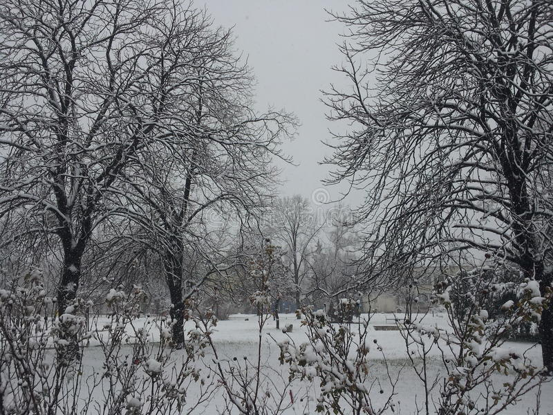 Winter Sofia lizenzfreie stockfotos