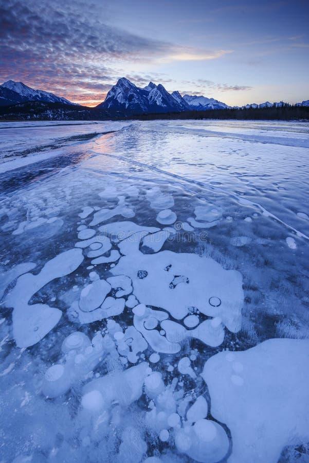 Winter-Sonnenaufgang über Kootenay-Ebene ER lizenzfreie stockfotos