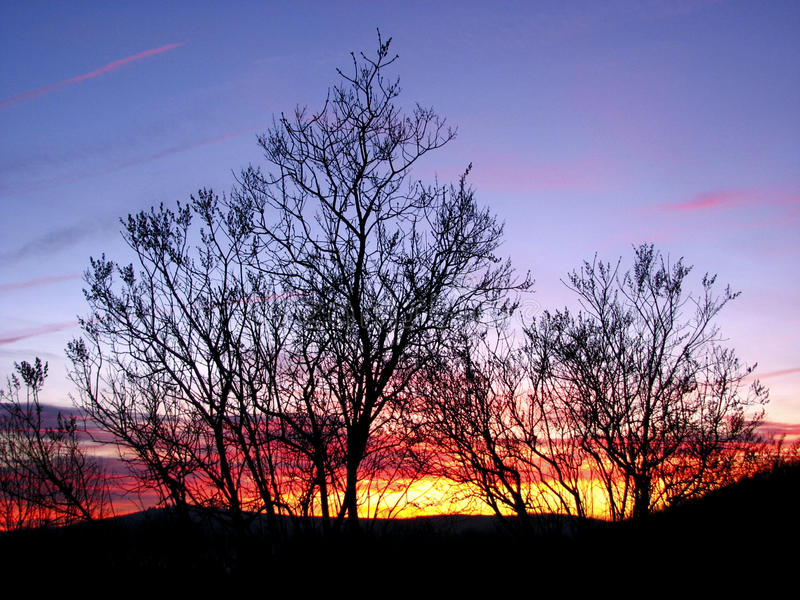 Winter-Sonnenuntergang lizenzfreie stockfotos