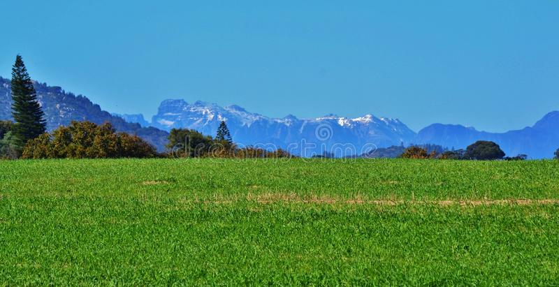 Winter in South Africa royalty free stock photo