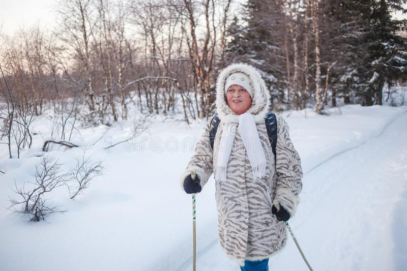 Winter sport - nordic walking. Senior woman hiking in cold forest. Happy ruddy face, healthy circulation . Cardio. Training activity in winter forest stock photo