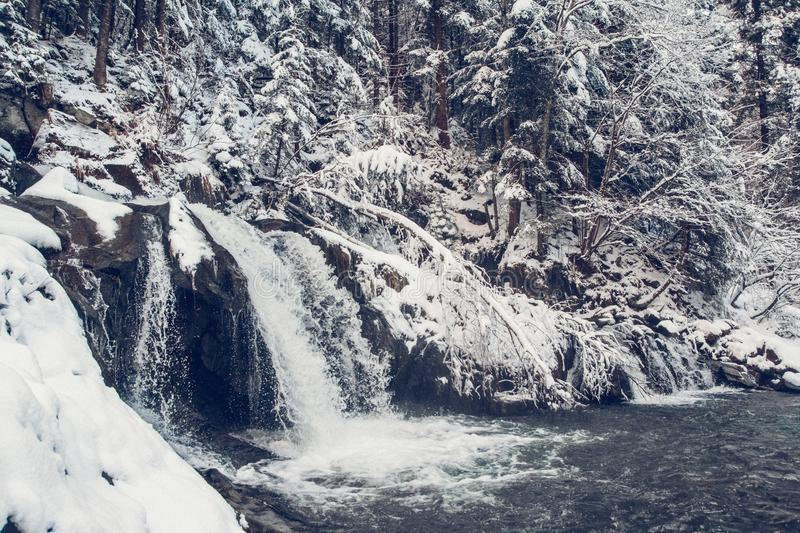 Winter spring fed creek waterfalls in the winter stock photo