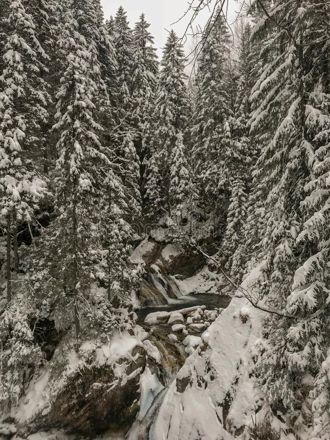 Winter spring fed creek waterfalls in the winter, Tatry, Poland stock images