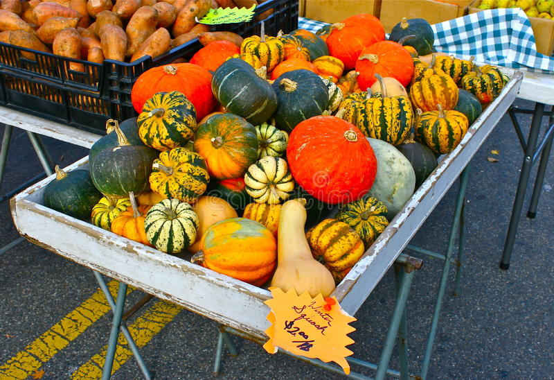 Winter Squash. Pumpkins, gourds, and winter squash form a colorful display at a local farmer's market royalty free stock image