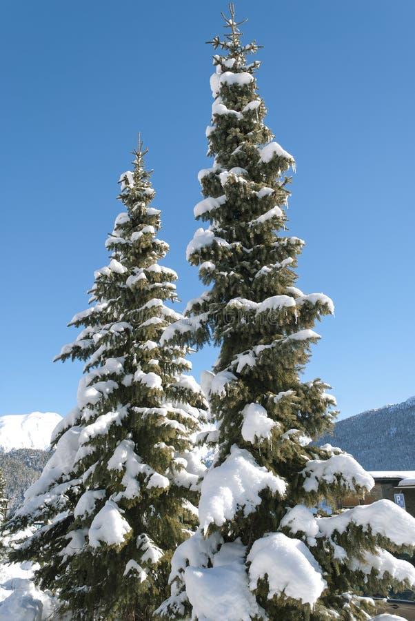 Winter in St Moritz lizenzfreie stockbilder