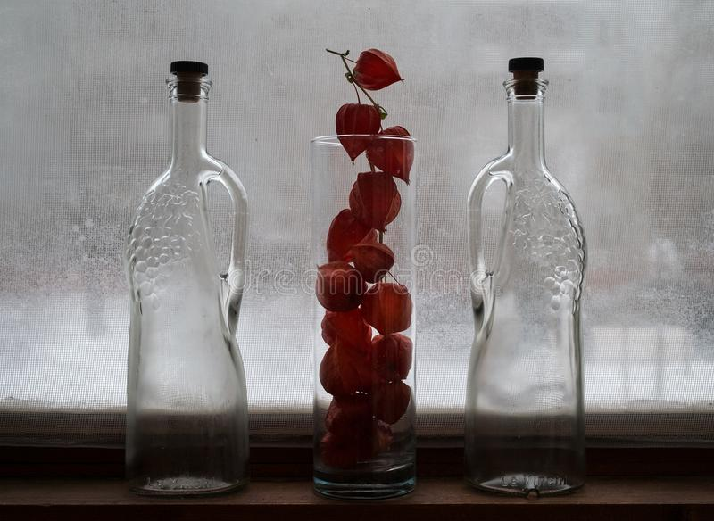 Winter still life. Frozen glass and bottles. Phyllis flowers. Still life in winter on the window royalty free stock image
