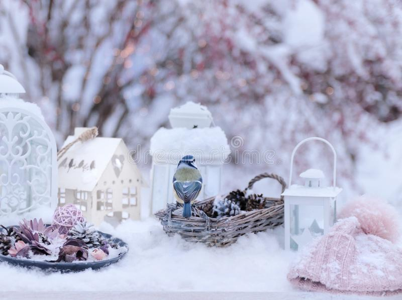 Winter still life with small bird stock images