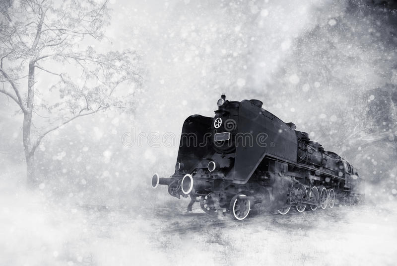 Winter storm royalty free stock photography