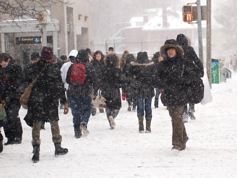 Winter storm hits Toronto