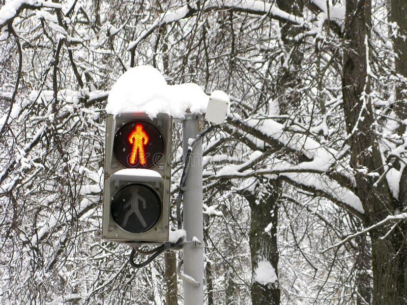 Winter, Straße, Ampel für Fußgänger, Rot, Halt lizenzfreies stockfoto