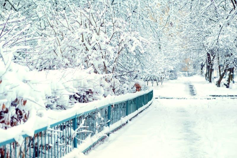 Winter-Straße im Schnee Platz für Text lizenzfreies stockbild