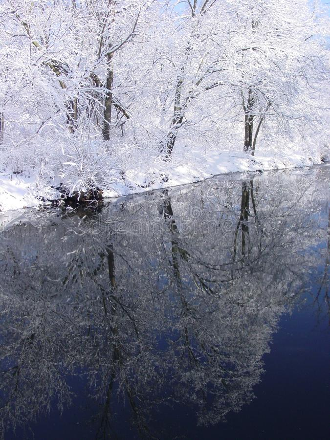 Winter Stream Reflection stock photo