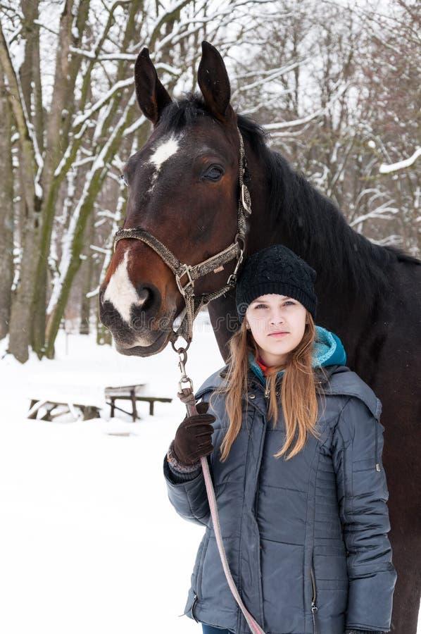 Winter Stroll mit Pferd lizenzfreies stockbild
