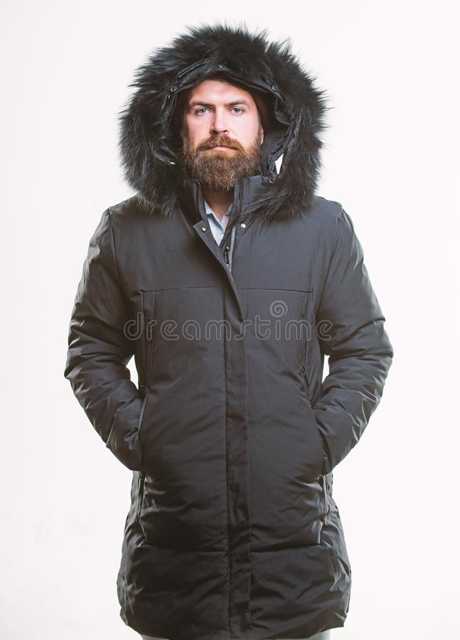 Winter stylish menswear. Winter outfit. Man bearded stand warm jacket parka isolated on white background. Hipster winter stock photo