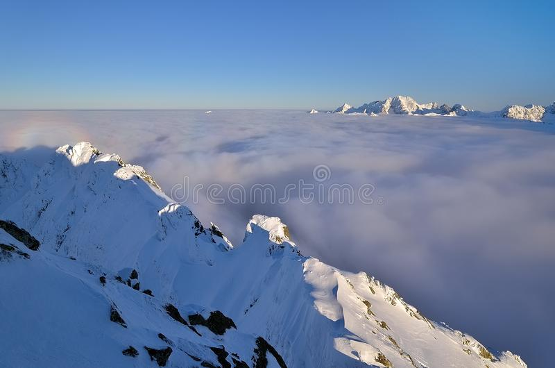 Winter summits over clouds stock photos