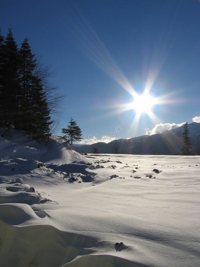 Winter sun royalty free stock photography