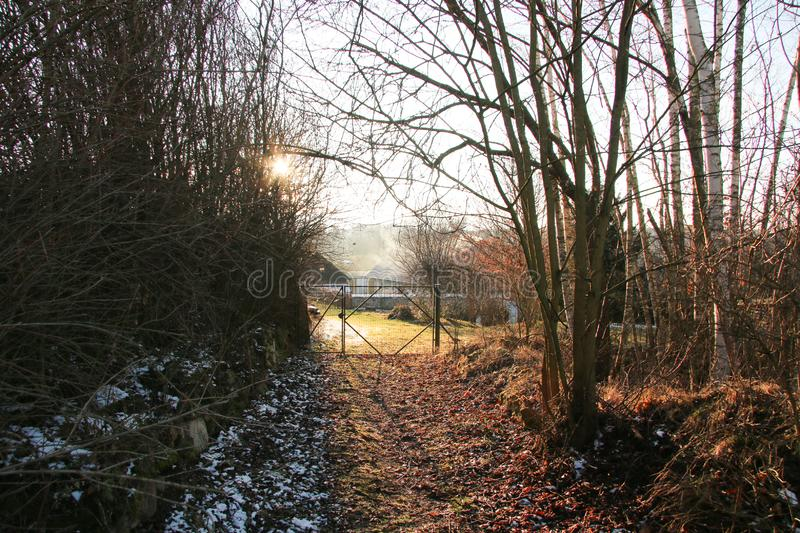 Winter sun gate trees royalty free stock photography