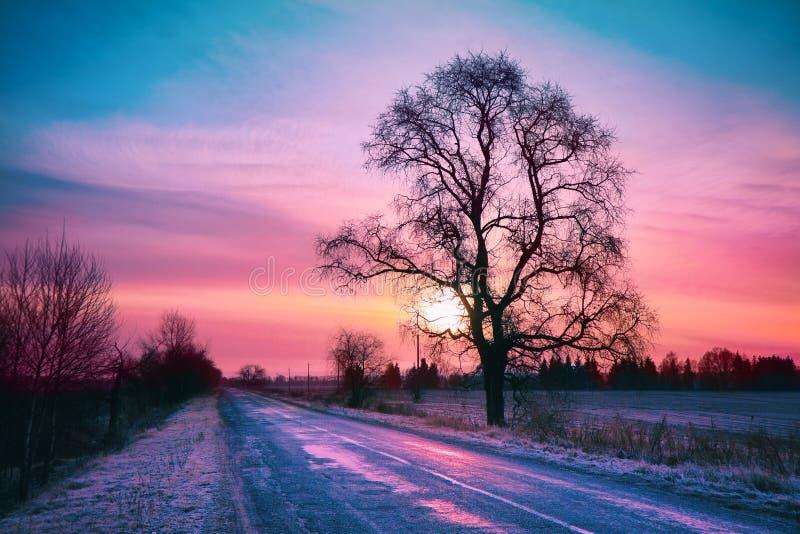 Winter sunrise. Beautiful winter sunrise over road royalty free stock images