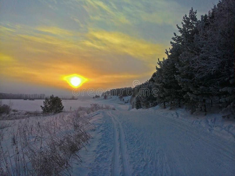 Winter sunrise royalty free stock photography
